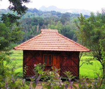 Stay in Wayanad